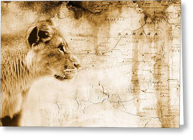 Maps Globes And Flags Greeting Cards - Lion In Front Of An Old Map Of Africa Greeting Card by Chris Knorr