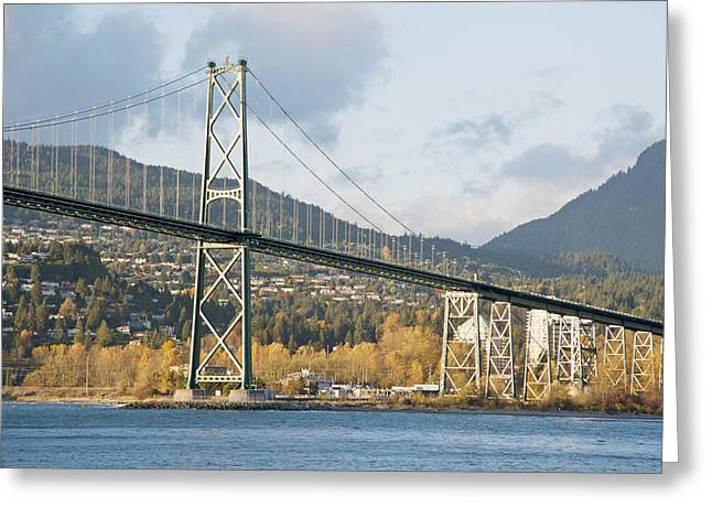 Lions Gate Bridge in autumn Greeting Card by Marlene Ford