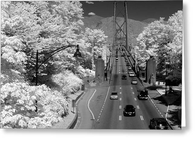 North Vancouver Photographs Greeting Cards - Lions Gate Bridge Summer Greeting Card by Bill Kellett