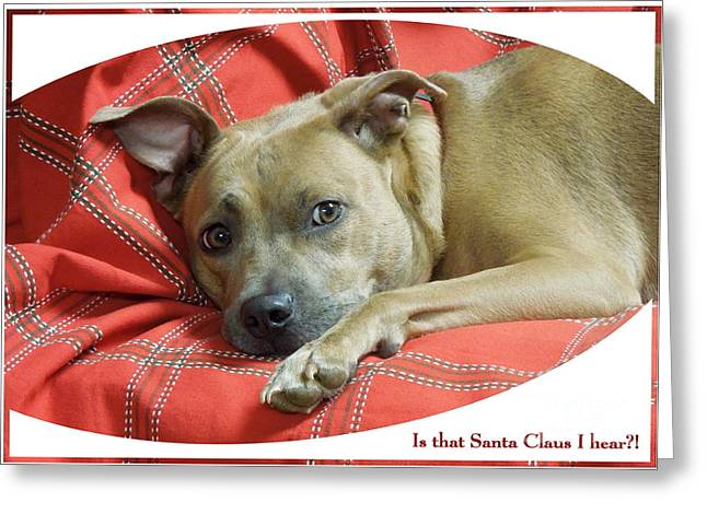 Apbt Greeting Cards - Listening for Santa Greeting Card by Renee Trenholm