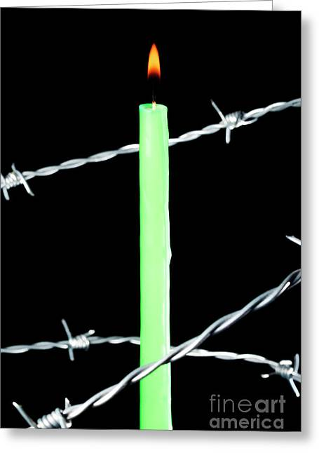 Barbed Wire Fences Greeting Cards - Lit candle surrounded by barbed wire Greeting Card by Sami Sarkis