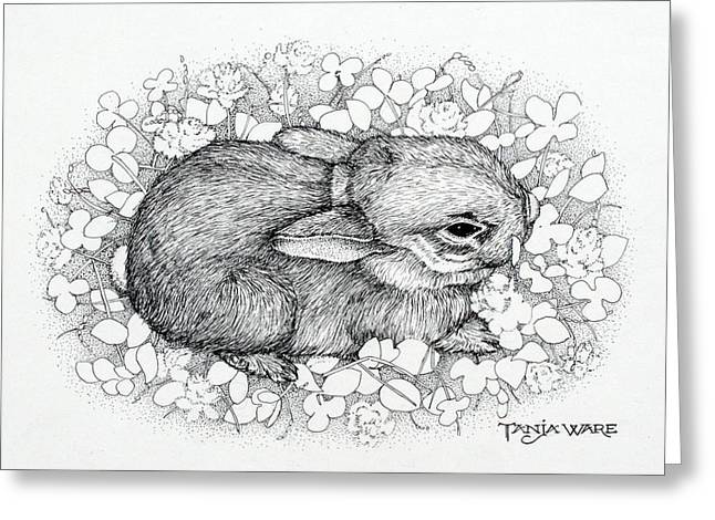 Baby Animal Drawings Greeting Cards - Little Big Ears Greeting Card by Tanja Ware