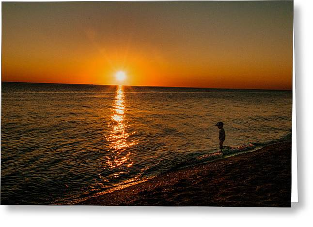 Little Boy Greeting Cards - Little Boy Wading At Sunset Greeting Card by Linda Pulvermacher