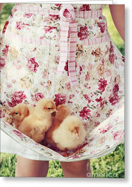 Apron Greeting Cards - Little Chicks Greeting Card by Stephanie Frey