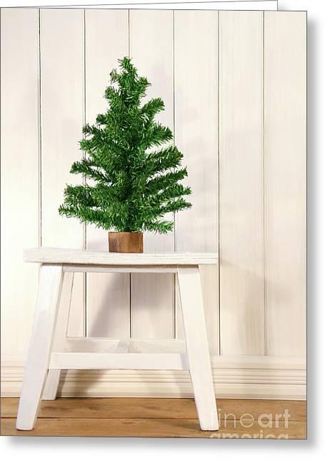 Little Green Fir Tree Greeting Card by Sandra Cunningham