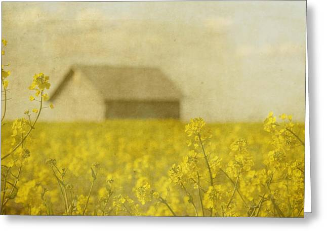 Oregon Flowers Greeting Cards - Little House on the Prairie Greeting Card by Rebecca Cozart
