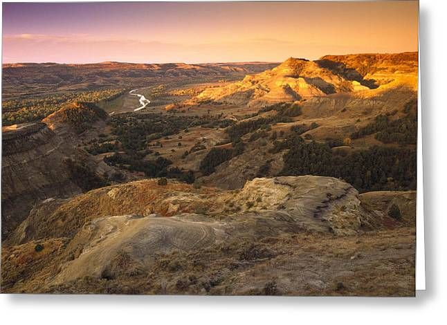 Pk Greeting Cards - Little Missouri River Theodore Greeting Card by Tim Fitzharris