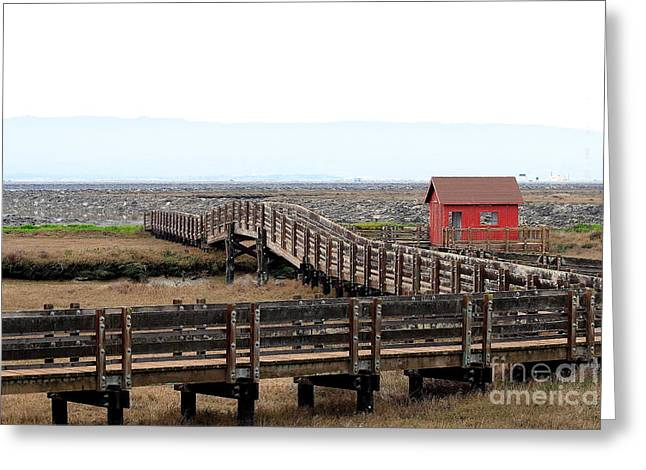 Shack Greeting Cards - Little Red Shack Greeting Card by Wingsdomain Art and Photography
