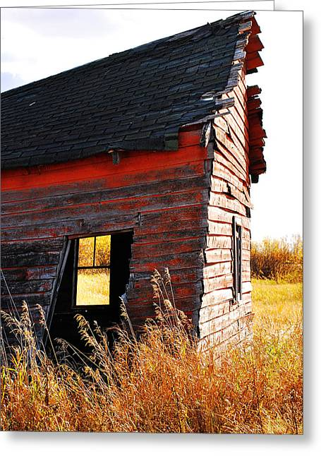 Edmonton Photographer Greeting Cards - Little Red Siding Roof Greeting Card by Jerry Cordeiro