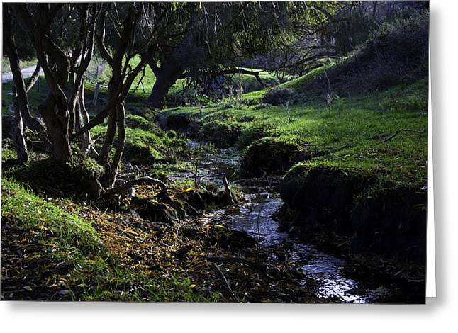 Stream Greeting Cards - Little Stream Greeting Card by Kelly Jade King