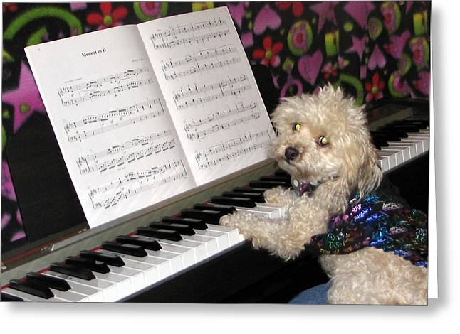 Doggies Greeting Cards - Little Virtuoso Greeting Card by Renee Trenholm