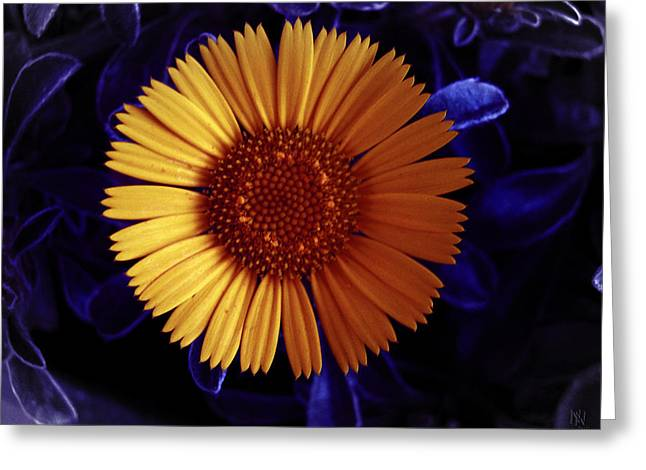 False-colour Greeting Cards - Little Yellow Flower Greeting Card by Nafets Nuarb