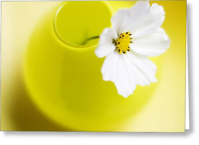 White Florals Greeting Cards - Little Yellow Vase Greeting Card by Rebecca Cozart