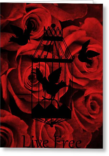 Live Mixed Media Greeting Cards - Live Free Greeting Card by Angelina Vick