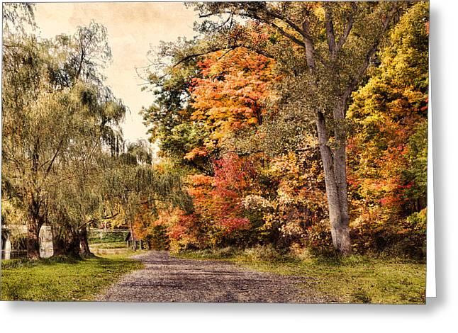 Fall Digital Art Greeting Cards - Living Colors Greeting Card by Peter Chilelli