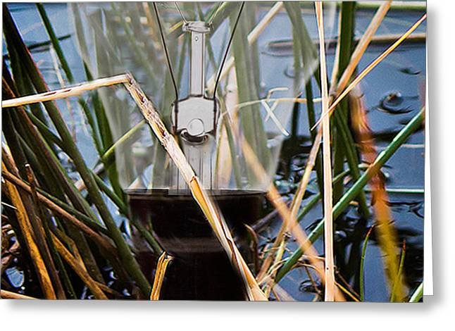 LIVING IN GLASS HOUSES Greeting Card by RONEL BRODERICK