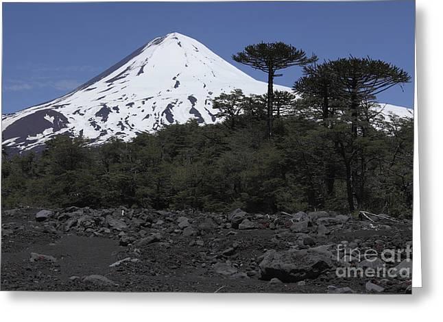 Llaima Volcano, Araucania Region, Chile Greeting Card by Martin Rietze