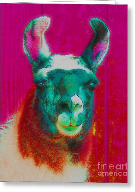Llama Digital Greeting Cards - Llama Of A Different Color Greeting Card by Smilin Eyes  Treasures