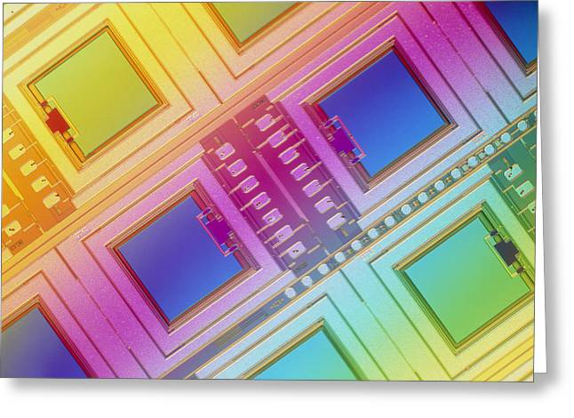 Micromechanics Greeting Cards - Lm Of Micromechanical Accelerometers Greeting Card by Volker Steger
