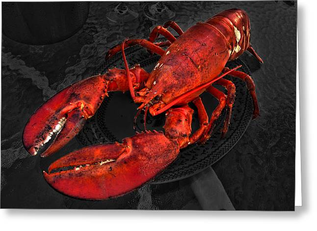 Invertebrates Greeting Cards - Lobstah Greeting Card by William Fields