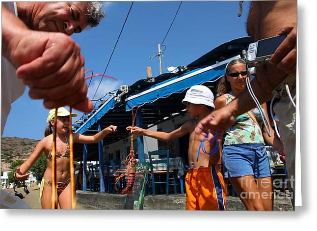 Ladder Back Chairs Greeting Cards - Lobster Hunt Greeting Card by George  Saitas