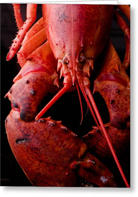 Italian Restaurant Greeting Cards - Lobster Greeting Card by Jim DeLillo