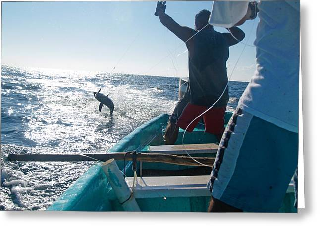 Two Fishing Men Greeting Cards - Local men catching tuna Greeting Card by Michael S. Lewis