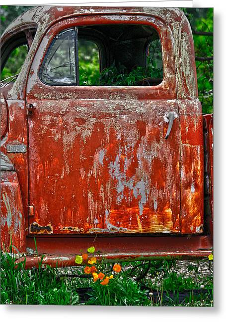 Edmonton Photographer Greeting Cards - Locked Colours  Greeting Card by Jerry Cordeiro
