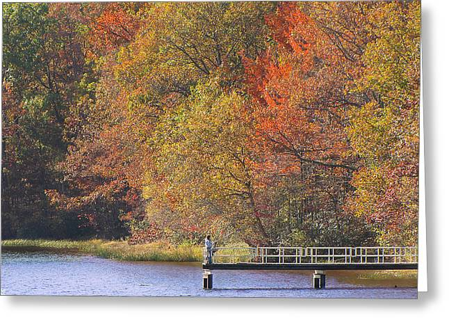 Locust Greeting Cards - Locust Lake State Park 2968 Greeting Card by David Dehner