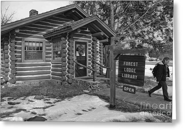 Log Cabins Photographs Greeting Cards - Log cabin library 11 Greeting Card by Jim Wright
