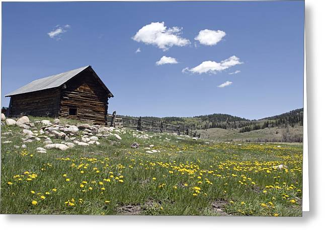 Log Cabin On The High Country Ranch Greeting Card by Rich Reid