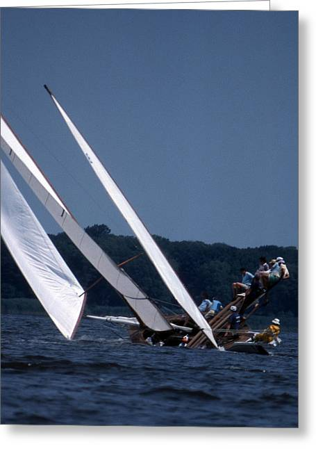 Sailboat Art Greeting Cards - Log Canoe Race Greeting Card by Skip Willits
