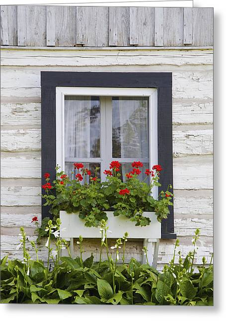 Low Country Cottage Greeting Cards - Log Home And Flower Box In The Window Greeting Card by David Chapman