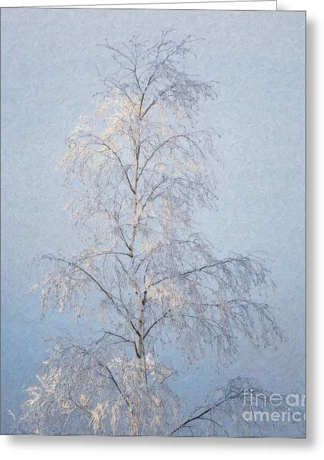 Frosty Mixed Media Greeting Cards - Lone and Slender Greeting Card by Ari Salmela