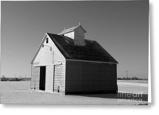 Illinois Barns Photographs Greeting Cards - Lone barn Greeting Card by David Bearden