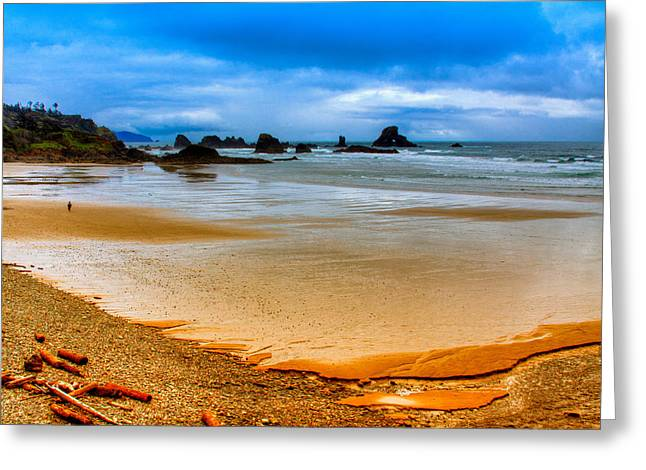 Lanscape Greeting Cards - Lone Beach Walker Greeting Card by David Patterson