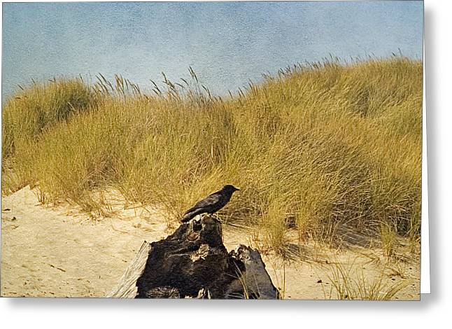 Oregon Photography Greeting Cards - Lone Crow Greeting Card by Bonnie Bruno