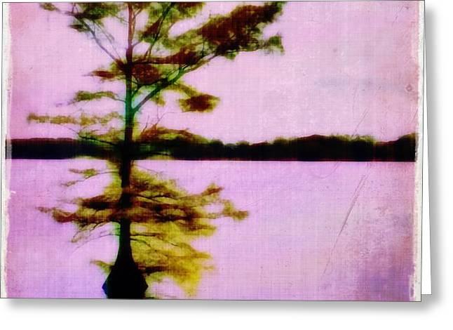 Lone Cypress Greeting Card by Judi Bagwell
