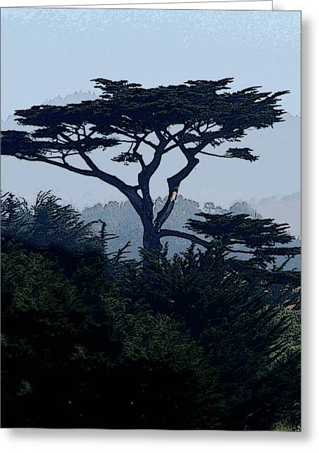 Marin County Greeting Cards - Lone Cypress Tree Greeting Card by Ron Cantrell