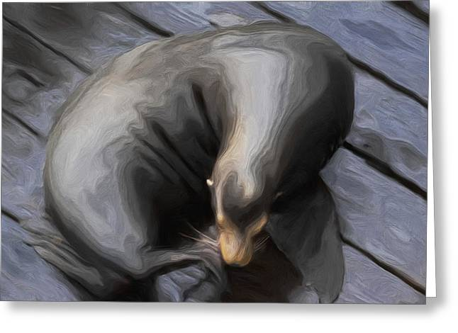 Sea Lions Digital Art Greeting Cards - Lone Sea Lion Greeting Card by Jack Zulli