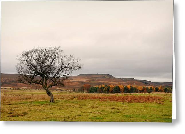 Lone Tree and Higger Tor Greeting Card by Siobhan Brennan-Raymond