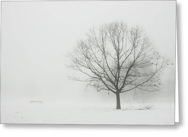 Trees In Winter Greeting Cards - Lone Tree In Winter Fog Greeting Card by Keith Webber Jr