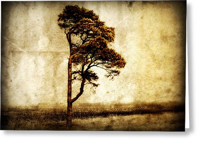 Landscape. Scenic Digital Art Greeting Cards - Lone Tree Greeting Card by Julie Hamilton