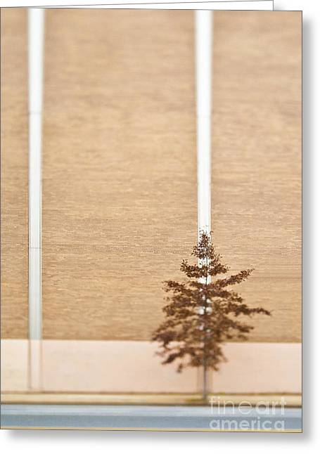 Yellow Line Greeting Cards - Lone Tree Next to a Building Greeting Card by Eddy Joaquim