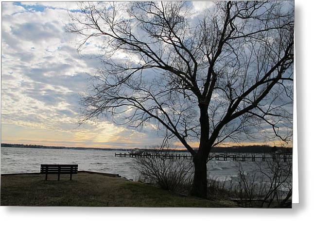 Lonely Bench At Dusk Greeting Card by Valia Bradshaw