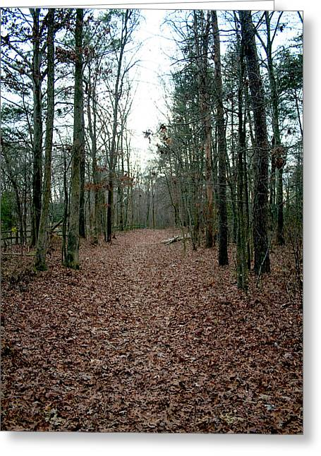 Terry Thomas Greeting Cards - Lonely Path Greeting Card by Terry Thomas