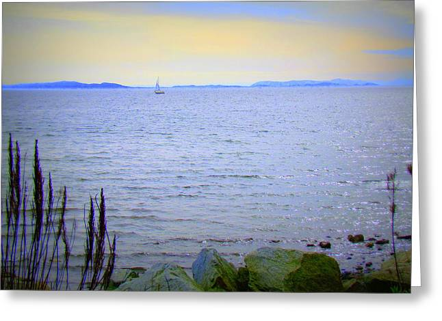 Blue Sailboats Greeting Cards - Lonely Sailboat II Greeting Card by Eva Kondzialkiewicz