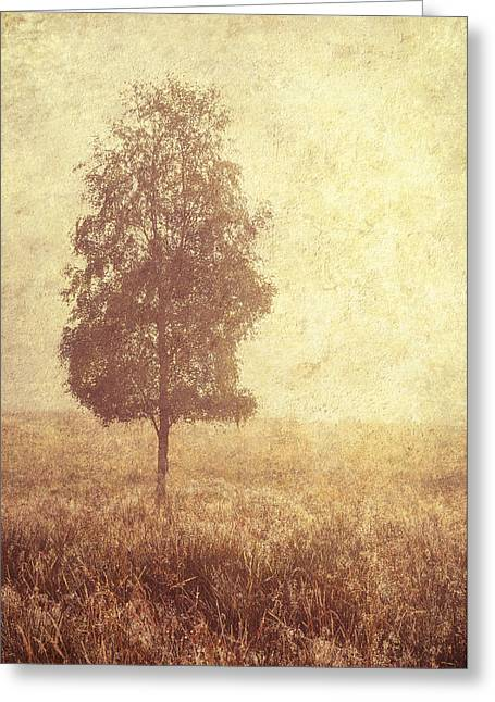Lonely Tree. Trossachs National Park. Scotland Greeting Card by Jenny Rainbow