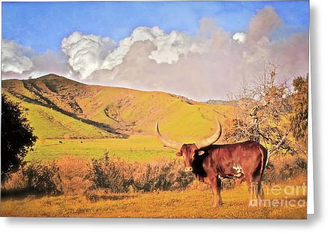 Ranch Digital Art Greeting Cards - Lonesome Longhorn Ojai California Greeting Card by Gus McCrea