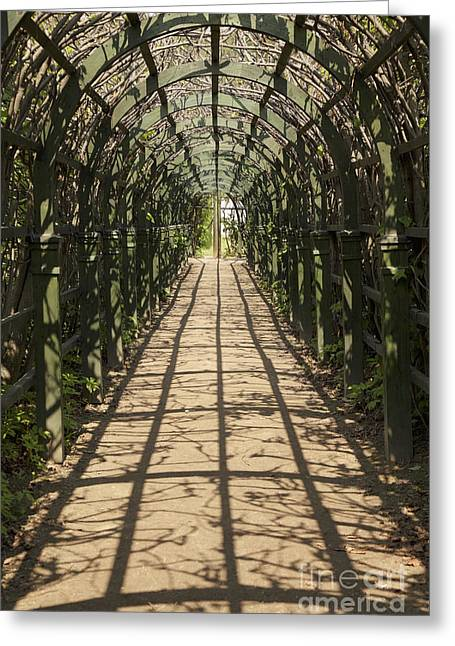 Trellis Greeting Cards - Long Garden Arch Passageway Greeting Card by Magomed Magomedagaev